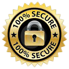 secure payments online via ssl